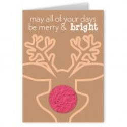 Buy Christmas the Easy Way Cards in NZ New Zealand.